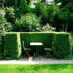 В каждом саду должен быть «укромный уголок». Экстраверты комфортно чувствуют себя в альковах. Интравертам строим зеленые кабинеты. #ландшафтныйдизайн #альков #благоустройство #живаяизгородь #сад #стрижкарастений #уголоксада #загородныйдом #загороднаяжизнь #дизайнсада #садовыйдизайн #ландшафтныйархитектор