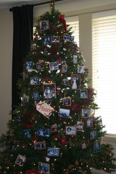 christmas design, xmas tree, famili, family photos, christmas tree decorations, christma tree, tree designs, photo ornaments, christmas trees