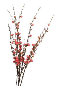 Spray Blossom - Red