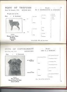 Dog Book The Cult of The Griffon Bruxellois Parker Rhodes Signed Fantastic RARE | eBay