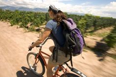 Go easy on the robust red wines of Argentina's wine capital if you're opting for a bicycle tour of  Mendoza. Image by Andrew Peacock / Lonel...