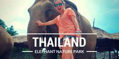 Visit the elephant sanctuary near chiang Mai for a life changing experience... ethical tourism in thailand