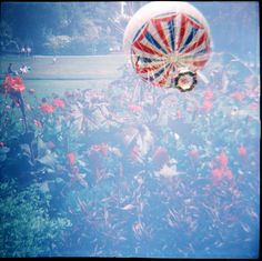 Taken by charliefulluck with a Lomography Diana F+
