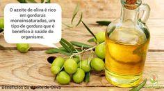 Catarina Quirino Stocco: Benefícios do Azeite de Oliva - Fica a Dica!!!