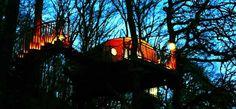Ty Mawr glow, Living Room Treehouses