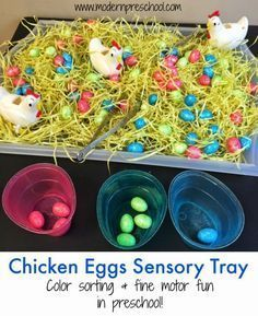 Fine motor and color sorting sensory tray with chicken eggs for toddlers and preschoolers from Modern Preschool, great preschool spring and easter activity Easter activities Chicken Eggs Sorting & Fine Motor Sensory Tray Farm Activities, Spring Activities, Infant Activities, Holiday Activities, Toddler Fine Motor Activities, Sensory Activities For Preschoolers, Child Development Activities, Kindergarten Activities, Science Activities