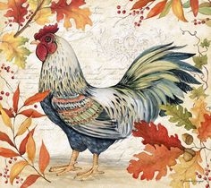 Hee Haw, Rooster Art, Old Barns, Country, Folk Art, Applique, Ink, Roosters, Painting