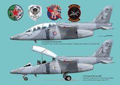 IA-63 Pampa II                                                       …