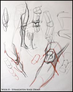 Analytical Figure Drawing SP08: Week 8 - Leg  Knee Structure Demo