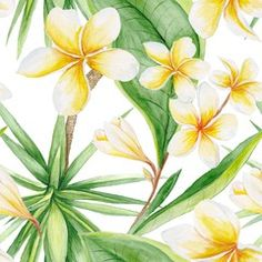 Exotic Plants Pattern Yucca Tree, Plumeria Flowers, Exotic Plants, Botanical Illustration, Textile Design, Herbs, Hand Painted, Watercolor, Stock Photos