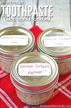 Our favorite toothpaste is Earthpaste, but we've figured out how to make it at home for just a fraction of the cost! Just a few ingredients, this easy recipe and a couple minutes, you've got homemade clay toothpaste in whatever flavor you want! :: DontWastetheCrumbs.com