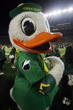 While the players sported a Fighting Duck on their shoulders, the Duck went with Chip Kelly logos during UO's 43-15 romp of Cal on Oct. 6, 2011.