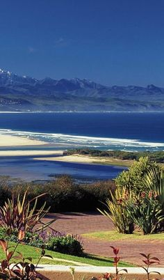 Nature in South Africa