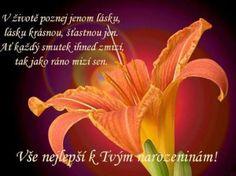 prani-k-narozeninam-3-300x224.jpg (300×224)