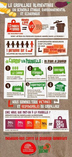 Infographies - Nourriture et gaspillage alimentaire - Madame Ousselin - Picasa Web Albums