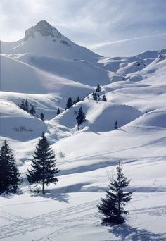 One of my favourite places in the world. Winter - Hahnenmoos Valley, Adelboden, Switzerland