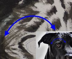 How to Paint Black Hair Animals (Dog) — Online Art Lessons Animal Paintings, Animal Drawings, Cool Drawings, Watercolor Animals, Watercolor Art, How To Draw Hair, Art Lessons, Painting Lessons, Dog Art