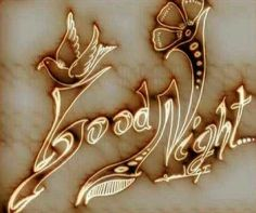 Best Good Morning Wishes Images for Whatsapp Good Night Images Cute, Good Night Messages, Night Love, Good Morning Good Night, Gud Night Quotes, Fun Quotes, Good Night Sister, Good Evening Greetings, Sweet Dreams My Love