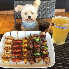 There's a new food critic in Los Angeles, and his name is Popeye. Once a starvedpup eating whatever scrap of food he could find on the street, Popeye is now an experienced gastronome thanks to the love and care of his mom, Ivy Diep. Ivy found Popeye as a stray, but didn't think she would …