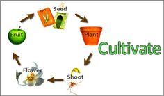 #CoachingModel #Cultivate  #coachunitedkingdom #dawnwaldron  #professionalcoach #CoachCampus #ICACoach