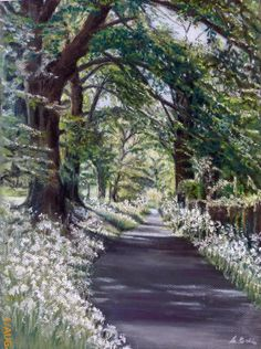 Cow parsley lane - Sue Bates pastel Pastel Drawing, Pastel Art, Cow Parsley, Chalk Pastels, Various Artists, Tree Art, Daffodils, Bridges, Roads
