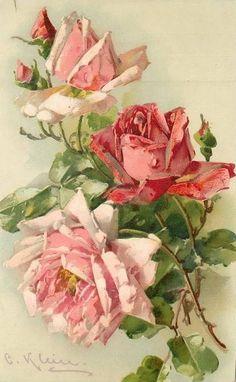 Vintage roses by Catherine Klein