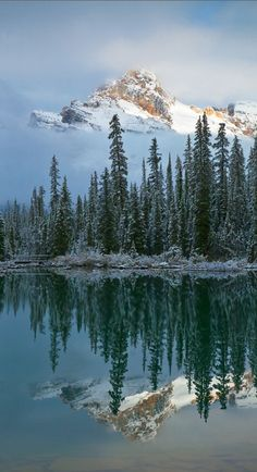 Cathedral Mountain reflected onto Lake O'Hara in Yoho National Park, British Columbia