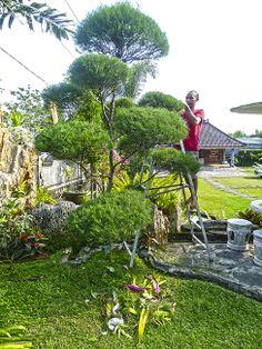 Eduardo Manostijeras está en Bali