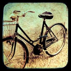I want an old bike to lean on the fence in my garden :)