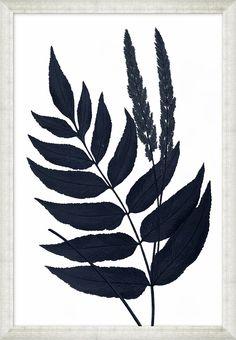 Indigo Ferns Framed Prints
