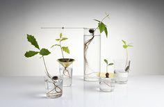 Planter sans terre   MilK decoration