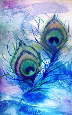 watercolor peacock