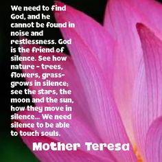We need to find God, and he cannot be found in noise and restlessness. God is the friend of silence. See how nature - trees, flowers, grass- grows in silence; see the stars, the moon and the sun, how they move in silence... We need silence to be able to touch souls. Mother Teresa