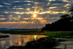 Sunrise Mana Pools, Zimbabwe