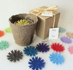 25 Kids Birthday Party Favors, Fun, Educational, Unique, Personalized by Nature Favors, $56.25
