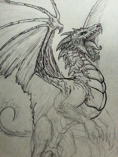 Here in Denver I help run a group called the Denver Illustration Salon and every Saturday we meet up at a local hot dog place and host a Drink n' Draw. That's where I sketched this guy up and start. - I like the roar of this dragon and how it is looking Art Drawings Sketches, Animal Drawings, Cool Drawings, Cool Dragon Drawings, Drawings Of Dragons, Realistic Dragon Drawing, Simple Dragon Drawing, Drawing Animals, Fantasy Dragon