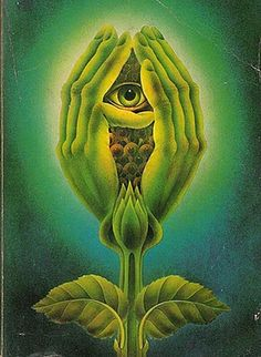 [Tome] | Nature's Role In Opening The Third Eye - TIMEWHEEL