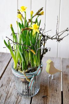 Narzissen Easter Flowers, Spring Flowers, Spring Has Sprung, Spring Time, Tulips, Flower Arrangements, Holiday, Plants, Inspiration