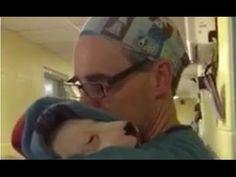 Το κουτάβι ξύπνησε τρομαγμένο και έκλαιγε συνέχεια. Προσέξτε τι κάνει ο γιατρός (Βίντεο) | animalplanet.gr