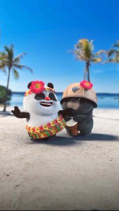 Cute Funny Baby Videos, Crazy Funny Videos, Funny Videos For Kids, Funny Animal Videos, Funny Babies, Cute Panda Cartoon, Panda Funny, Cute Cartoon Images, Cute Love Cartoons