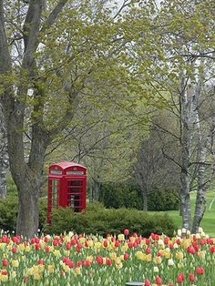 I would love to have a Telephone Box as a folly in the garden.  Or really pull out my geekiness and have a Police Box instead.
