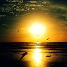 Morning sunrise ~ Flight.  Photo by @Bellanda ® ~ Bellanda