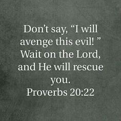 Proverbs 20:22 HCSB