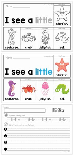 Summer Sight Words Fluency Flip Books (color and black & white) with recording worksheets. A fun paper-saving alternative to traditional emergent reader booklets. Get this booklet FREE when you download the preview.