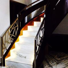 Staircase design!!!  Stainless steel and wood with matt finish.led lights...