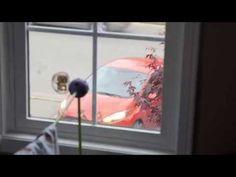 video surprise decoration