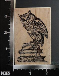 OWL BIRD ON TOP OF BOOKS LITERARY OWL rubber stamp BY STAMPENDOUS