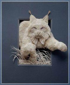 Художник из Канады Calvin Nicholls (Кэлвин Николлс) создает бумажные объемные картины с 80-х годов 20 века. В своих работах Calvin Nicholls соединил всю любовь к искусству и дикой природе в единое целое!
