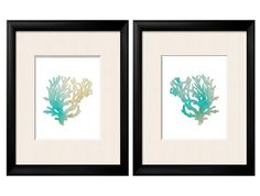 Antique Illustration Sea Coral Print Set of Two 8x10, Coral Wall Art, Coral Print, Sealife print , Teal Coral Prints