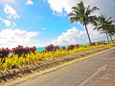 Savai'i, Samoa Places Ive Been, Country Roads, Heart